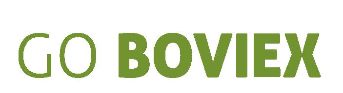 Boviex